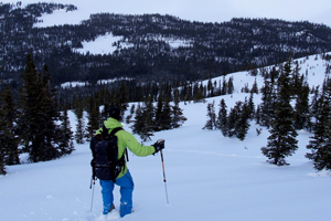 Nature of British Columbia | Claw Mountain Outfitters